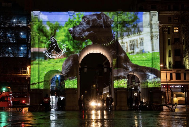 Lintbells' digital #ThankYouDogs campaign was projected onto London landmarks